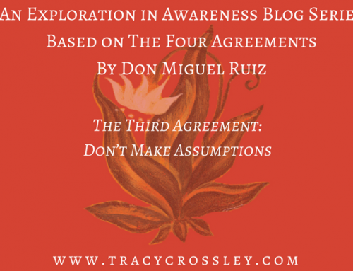 The Third Agreement: Don't Make Assumptions